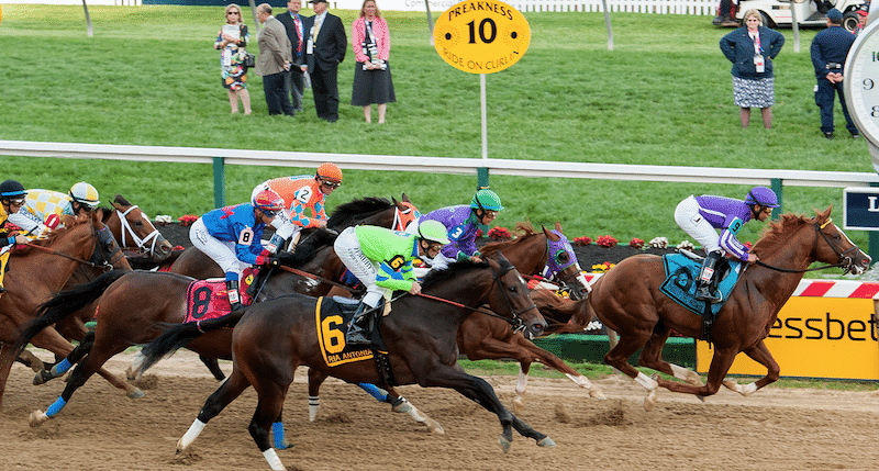 What to bet on the preakness betting odds calculator horses